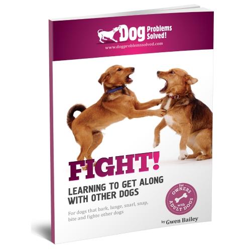 Fight 3 d ebook cover